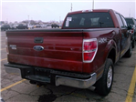 2014 F-150 SuperCrew Cab 4x4, Pickup #KF48635A - photo 11