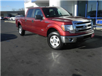 2014 F-150 SuperCrew Cab 4x4, Pickup #KF48635A - photo 7