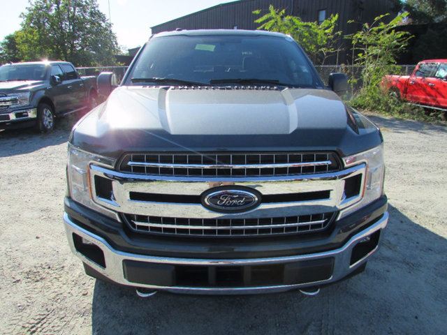 2018 F-150 Crew Cab 4x4 Pickup #18008 - photo 3