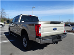 2017 F-250 Crew Cab 4x4 Pickup #TEF36583 - photo 6