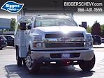 2019 Chevrolet Silverado Medium Duty Regular Cab DRW 4x2, Monroe AL Series Platform Body Contractor Body #3191014 - photo 1