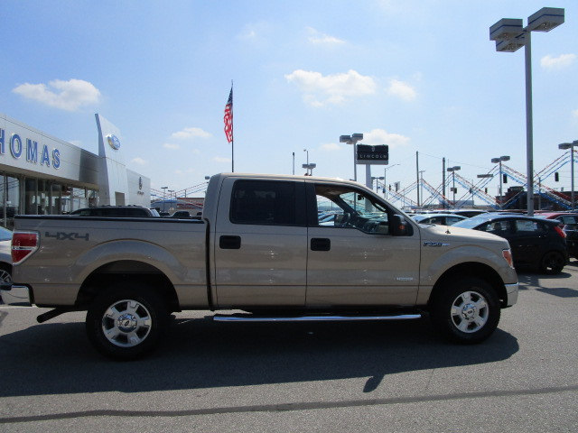 2014 F-150 Super Cab 4x4 Pickup #CP5187 - photo 18