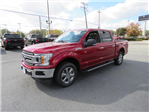 2018 F-150 Crew Cab, Pickup #S079 - photo 4