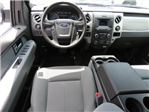 2014 F-150 SuperCrew Cab 4x2,  Pickup #S326A - photo 8