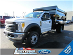 2017 F-550 Regular Cab DRW 4x4, Rugby Landscape Dump #10951 - photo 1
