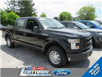 2016 F-150 SuperCrew Cab, Pickup #FT6003 - photo 4