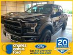 2019 F-150 SuperCrew Cab 4x4,  Pickup #192380 - photo 1