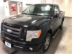 2009 F-150 Regular Cab 4x2,  Pickup #B962301 - photo 4