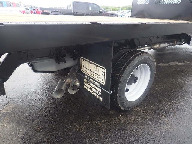 2016 F-450 Regular Cab DRW, Monroe Platform Body #HR16628 - photo 4