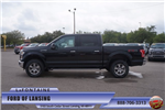 2016 F-150 SuperCrew Cab 4x4, Pickup #16F958 - photo 14