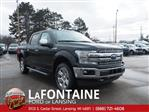 2019 F-150 SuperCrew Cab 4x4,  Pickup #19F226 - photo 3