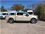 2018 F-150 Crew Cab 4x4, Pickup #18F082 - photo 3