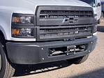 2020 Chevrolet Silverado 5500 Regular Cab DRW 4x2, Royal Truck Body Service Body #LH282726 - photo 4