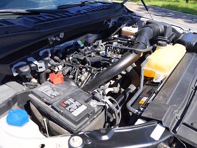 2019 Ford F-150 SuperCrew Cab 4x4, Pickup #KKD12656 - photo 22
