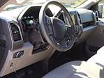 2019 Ford F-150 SuperCrew Cab 4x4, Pickup #KKE96089 - photo 10
