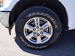 2019 Ford F-150 SuperCrew Cab 4x4, Pickup #KKE96089 - photo 22