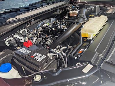 2020 Ford F-150 SuperCrew Cab 4x4, Pickup #LKD96728 - photo 22