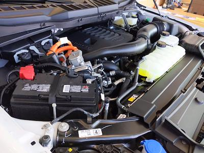 2021 Ford F-150 SuperCrew Cab 4x4, Pickup #MFC05896 - photo 6
