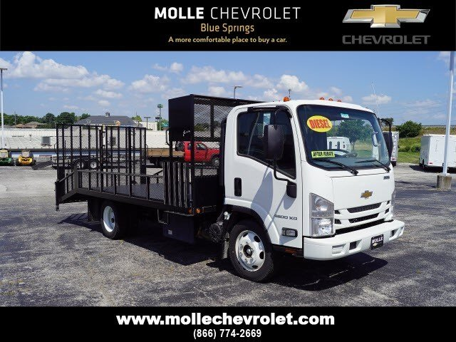 2017 LCF 4500XD Regular Cab 4x2,  Economy MFG Co. Dovetail Landscape #C14935 - photo 3