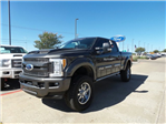 2017 F-250 Crew Cab 4x4 Pickup #178386 - photo 1