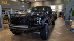 2018 F-150 Crew Cab 4x4 Pickup #180151 - photo 1