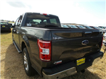 2018 F-150 SuperCrew Cab 4x2,  Pickup #180353 - photo 2