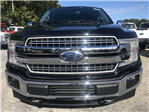 2018 F-150 Crew Cab 4x4 Pickup #18040 - photo 3