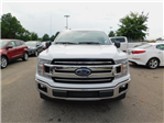 2018 F-150 Crew Cab Pickup #70888 - photo 8