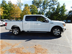 2018 F-150 Crew Cab Pickup #71412 - photo 3