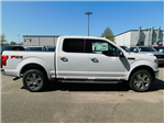 2018 F-150 SuperCrew Cab 4x4,  Pickup #74193 - photo 3