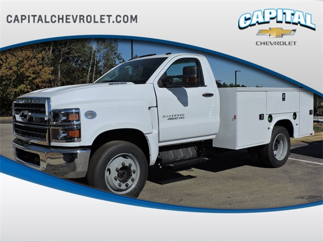 2019 Chevrolet Silverado 4500 Regular Cab DRW 4x2, Knapheide Service Body #9CC63606 - photo 1