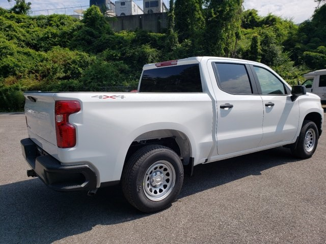 2020 Chevrolet Silverado 1500 Crew Cab 4x4, Pickup #L87946 - photo 2