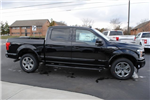 2018 F-150 Crew Cab 4x4, Pickup #FB98433 - photo 6