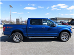 2018 F-150 Crew Cab 4x4, Pickup #185081 - photo 7
