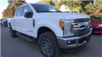 2017 F-250 Crew Cab 4x4 Pickup #HEE71946 - photo 3