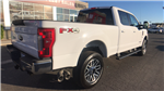 2017 F-250 Crew Cab 4x4 Pickup #HEE71946 - photo 7