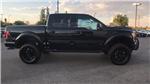 2017 F-150 Crew Cab 4x4 Pickup #HFC60524 - photo 4