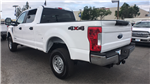 2018 F-250 Crew Cab 4x4,  Pickup #JEC42050 - photo 5