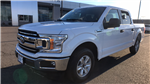 2018 F-150 SuperCrew Cab 4x2,  Pickup #JKD57827 - photo 7