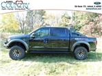 2017 F-150 SuperCrew Cab 4x4,  Pickup #AT08738 - photo 6