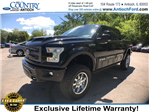 2017 F-150 Crew Cab 4x4, Pickup #AT08744 - photo 3