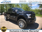 2017 F-150 Crew Cab 4x4, Pickup #AT08744 - photo 6