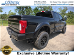 2017 F-250 Crew Cab 4x4, Pickup #AT08752 - photo 2