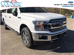 2018 F-150 Crew Cab 4x4, Pickup #AT08873 - photo 8