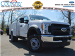 2017 F-450 Regular Cab DRW 4x4,  Reading SL Service Body #AT09668 - photo 1