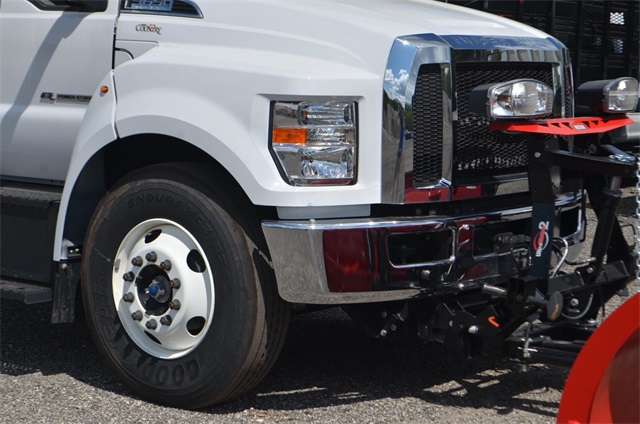 2019 F-650 Regular Cab DRW 4x2,  Cab Chassis #AT10240 - photo 3