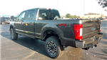 2017 F-350 Crew Cab 4x4 Pickup #TT21604 - photo 2