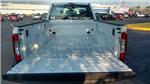 2017 F-250 Regular Cab 4x4 Pickup #TT21625 - photo 5