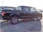 2018 F-150 Crew Cab 4x4, Pickup #180227 - photo 10