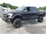 2017 F-150 Crew Cab 4x4 Pickup #71619 - photo 4